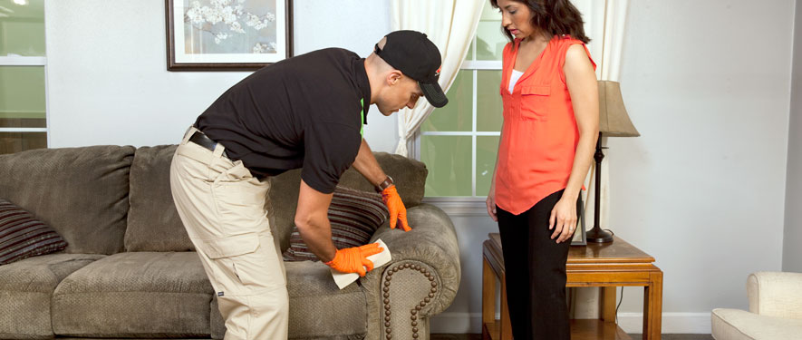 Nicholasville, KY carpet upholstery cleaning