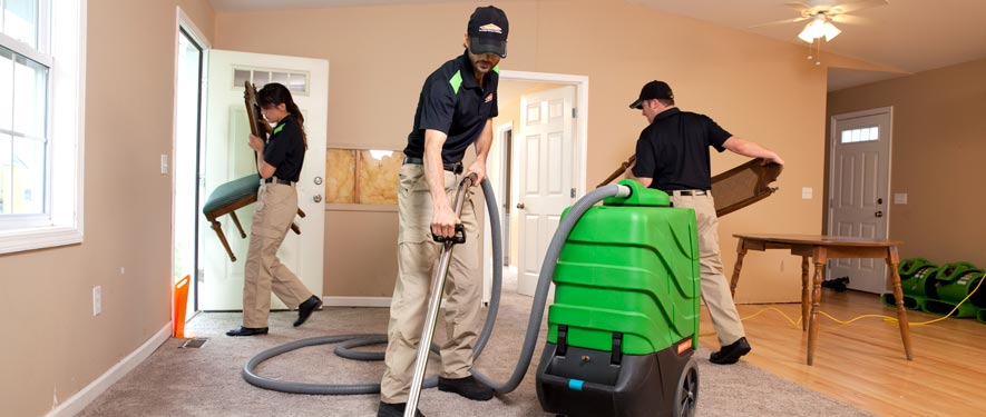 Nicholasville, KY cleaning services